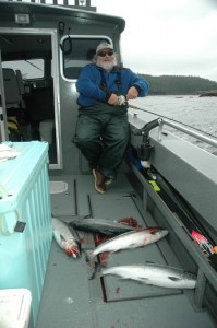 Jerry is all smiles as the coho pile up on deck.  Silver salmon fishing has been fast lately!
